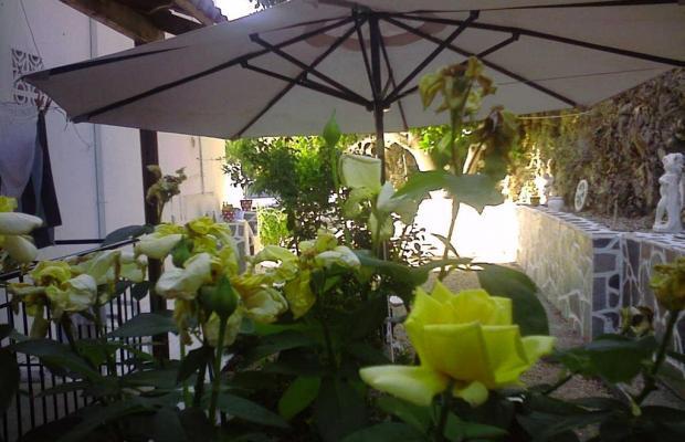 фотографии отеля Villa Marabou изображение №11