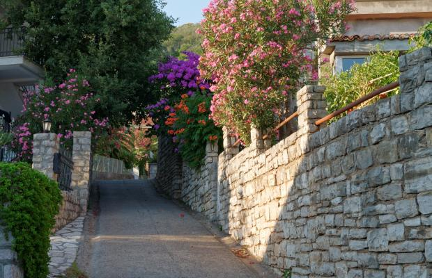 фотографии отеля Villa Milica изображение №23