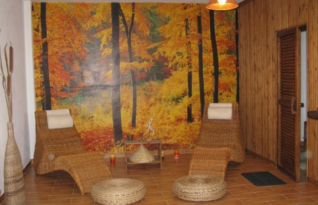фотографии отеля Apolithomeno Dasos Holiday Villas изображение №11