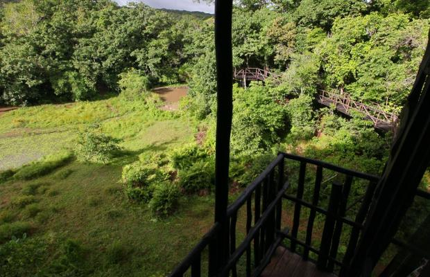 фотографии отеля Shimba Rainforest Lodge изображение №19