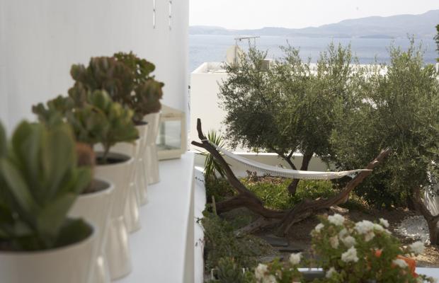 фотографии отеля Aiora House изображение №3