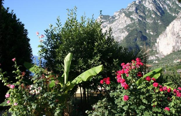фотографии Villa Moretti изображение №12