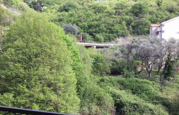 фото Olive Terrace изображение №6