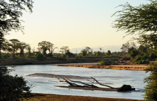 фотографии отеля Samburu Serena Safari Lodge изображение №3