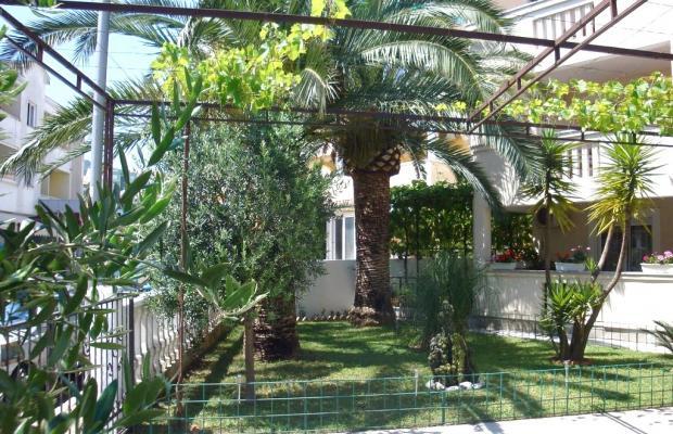 фотографии отеля Villa Anna изображение №11