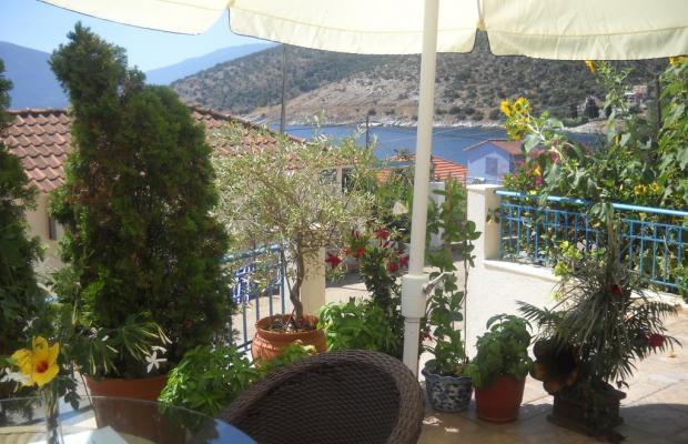 фотографии Olive Bay изображение №20