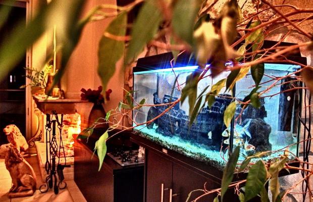 фотографии отеля 9 Queens Spa Hotel изображение №39