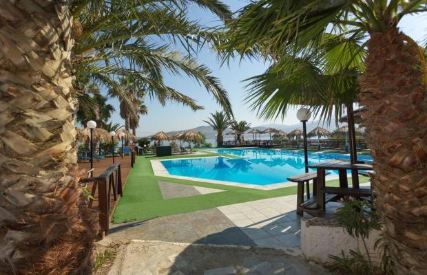 фотографии отеля Clara Hotel Vacation Club изображение №7