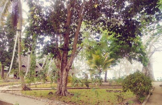 фото отеля Menai Bay Beach Bungalows изображение №5