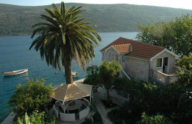 фотографии Villa Roza изображение №20