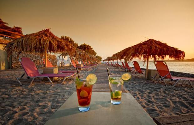 фото отеля Venus Beach изображение №17