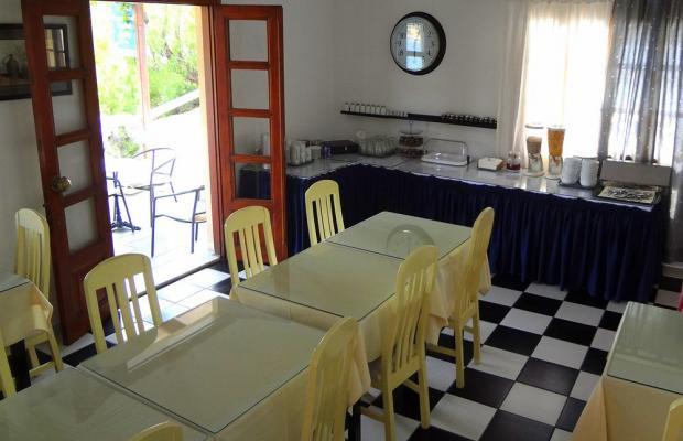 фотографии отеля Blue Bay Hotel изображение №35