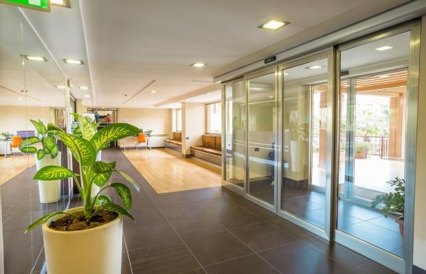фото отеля Hotel Residence Ulivi E Palme  изображение №5