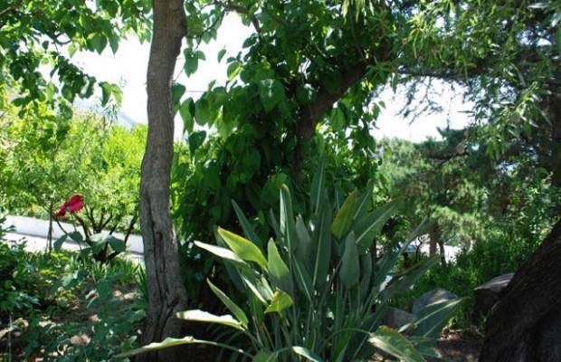 фотографии отеля Costa Residence Vacanze изображение №35