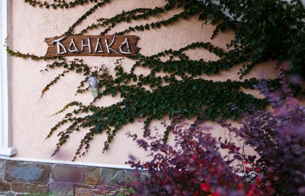 фото Гостевой Дом Морская Феерия (Gostevoy Dom Morskaya Feeriya) изображение №26