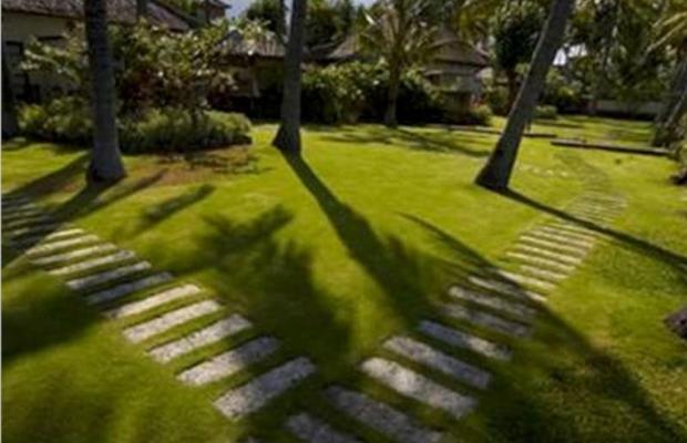 фотографии отеля Scuba Seraya Resort изображение №7