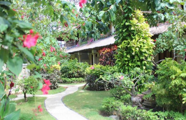 фото отеля The Sari Beach изображение №33
