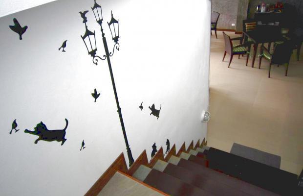 фотографии отеля White Cat Hotel изображение №7