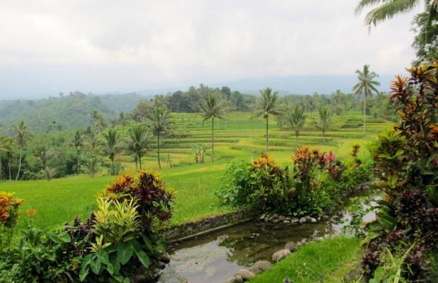 фотографии Ijen Resort & Villas изображение №8