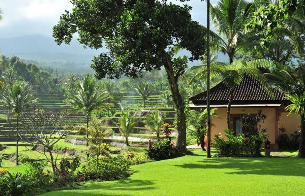 фотографии Ijen Resort & Villas изображение №4