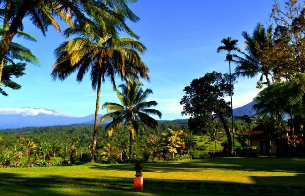 фотографии отеля Ijen Resort & Villas изображение №3