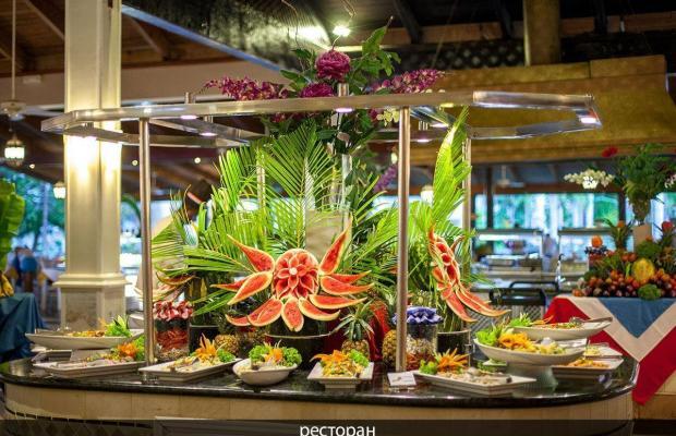 фото отеля Vista Sol Punta Cana Beach Resort & Spa (ex. Carabela Bavaro Beach Resort) изображение №5