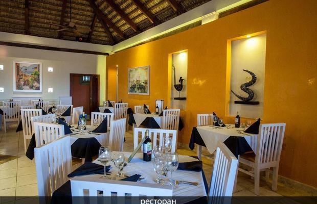 фотографии Vista Sol Punta Cana Beach Resort & Spa (ex. Carabela Bavaro Beach Resort) изображение №4