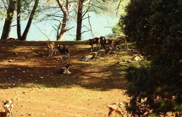 фотографии отеля Balneario Parque de Cazorla изображение №3