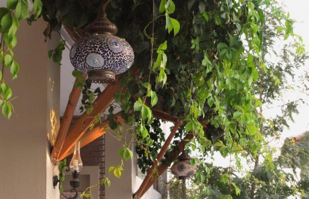 фотографии Ova Resort изображение №28