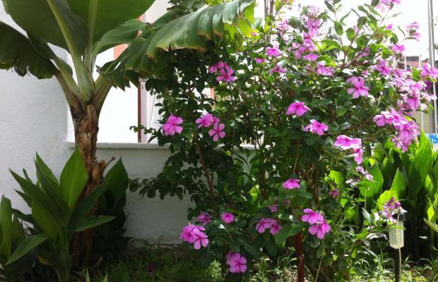 фото Flower Villa Apart изображение №6
