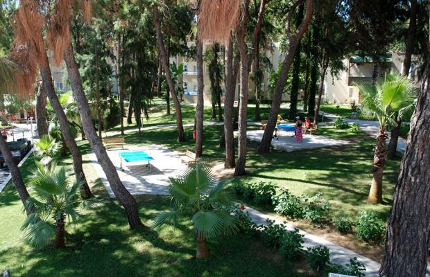 фотографии отеля Club Hotel Sidelya изображение №35