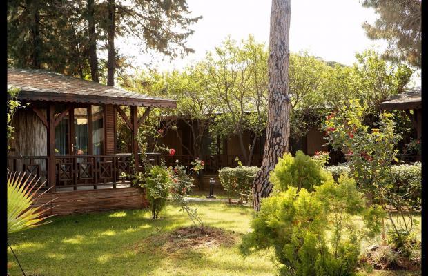 фотографии отеля Sentido Flora Garden изображение №111