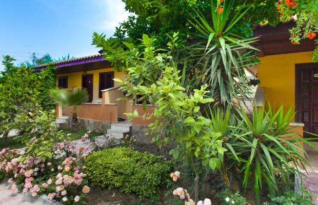 фотографии отеля Ozlem Garden Hotel изображение №3