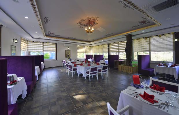 фотографии отеля Linda Resort Hotel изображение №87