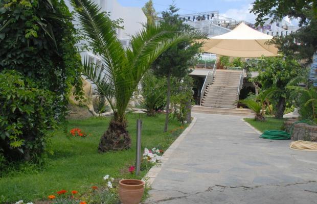 фотографии Peda Sun Club Hotel (ex. Sun Club Bodrum) изображение №12
