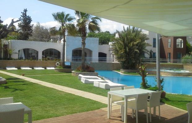 фотографии Costa Luvi Hotel (ex. The Luvi Hotel; Club Oleal) изображение №8