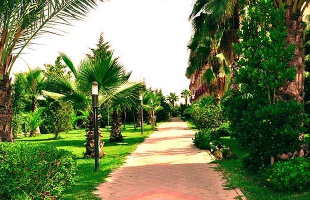 фотографии Orfeus Park изображение №16