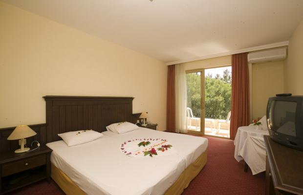 фото отеля Palm D'or изображение №5