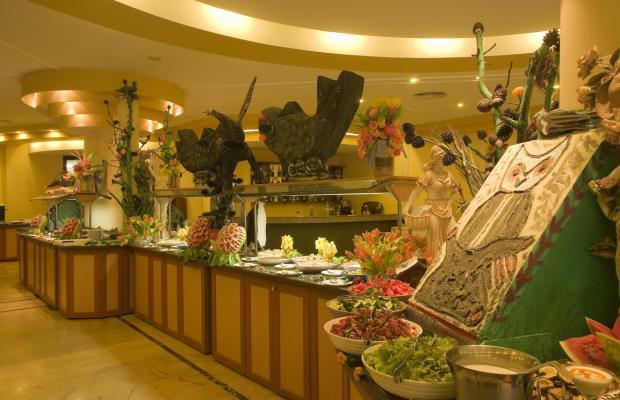 фотографии отеля Palm D'or изображение №3