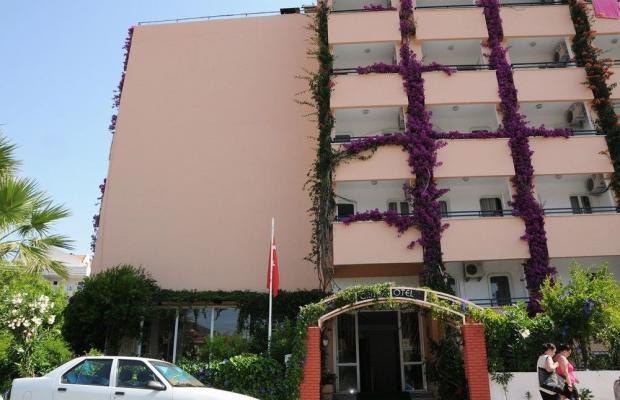 фото Orkide изображение №14