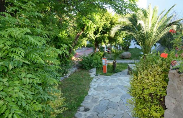 фото отеля Rexene Resort (ex. Barcello Rexene Resort) изображение №25
