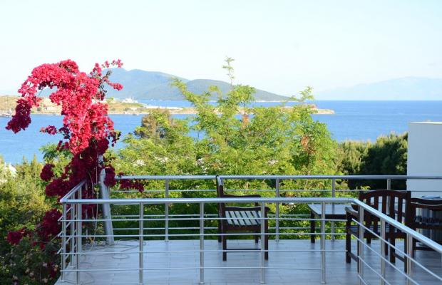 фотографии Rexene Resort (ex. Barcello Rexene Resort) изображение №24