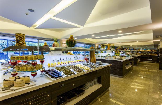 фото Avena Resort & SPA (ex. Gold Safran) изображение №42