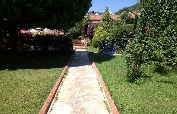 фотографии отеля Katre Oludeniz Hotel изображение №11