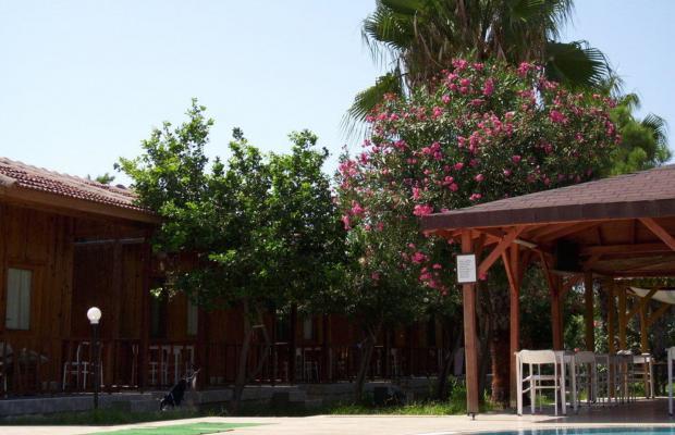 фотографии отеля Amazon изображение №15