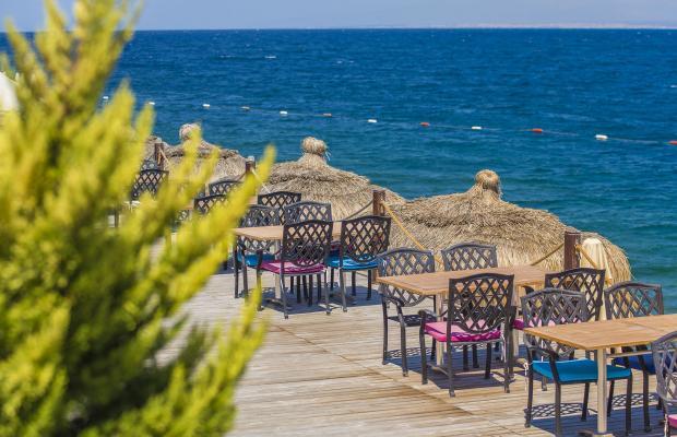 фотографии Blu Ciragan Bodrum Halal Resort & Spa (ex.The Blue Bosphorus) изображение №24