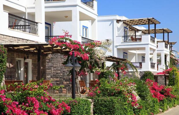 фотографии Aktur Residence изображение №52