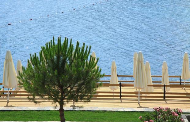 фото отеля Aktur Residence изображение №25