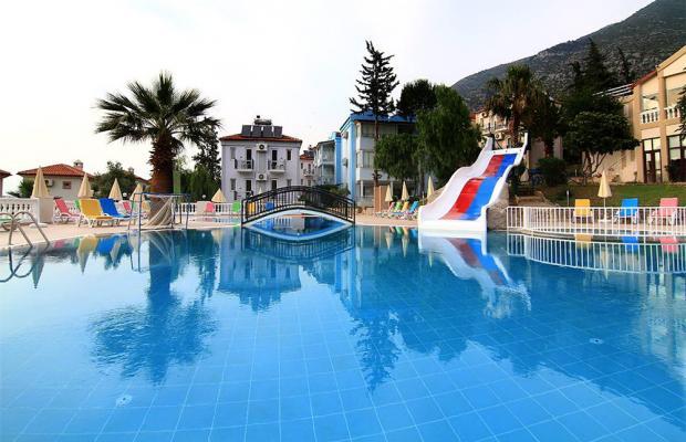 фотографии Daisy Garden Resort (ex. Violet Hotel; Big Rose) изображение №12