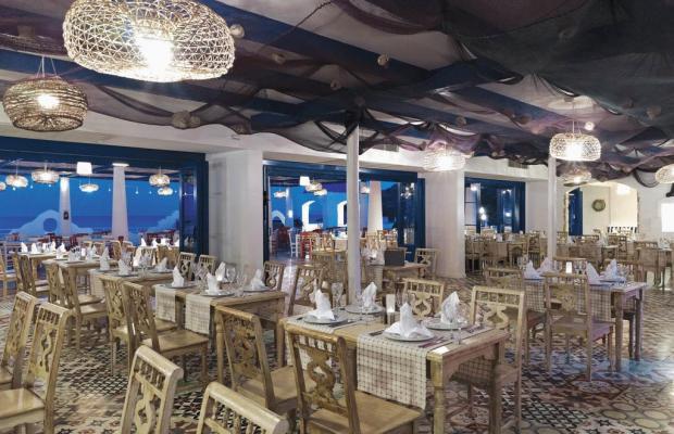 фотографии отеля Paloma Pasha Resort изображение №27